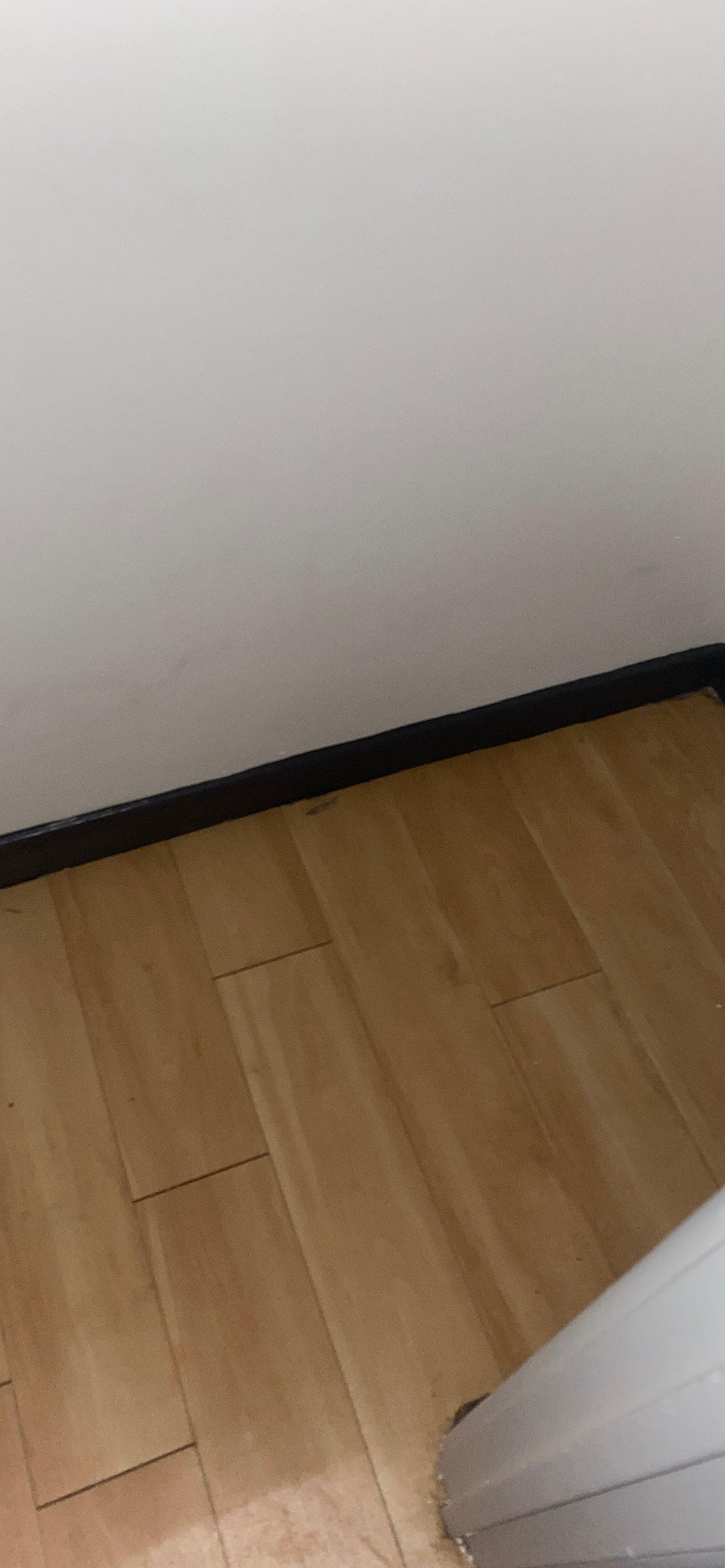 2x4 Closet self storage unit